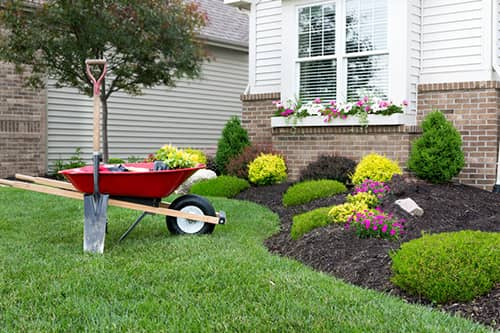 Make Your Yard Stand Out